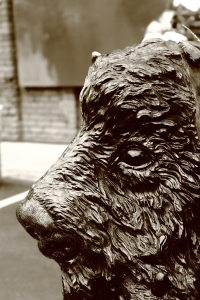 Buffalo sculpted out of wood